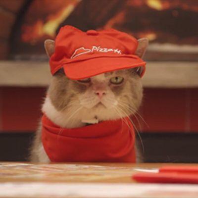 La pubblicità di Pizza Hut con i gattini