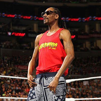 Snoop Dogg sul ring con Hulk Hogan caccia un babbo