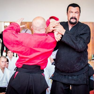 Hanno chiesto a Steven Seagal di insegnare Aikido ai corpi speciali serbi