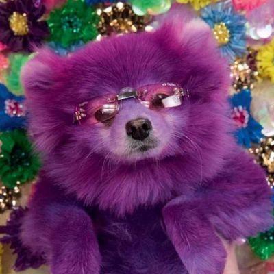 Fluffy: il neca fashion viola