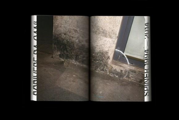 Scrivere da Cani-Spiner-1994-2014 5