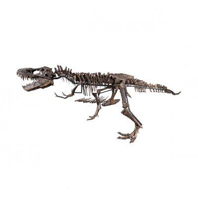 Con poco più di 2 millie ti puoi comprare uno scheletro og di t-rex