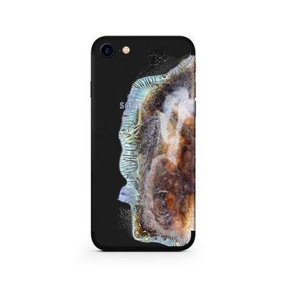 Cover dell'iPhone da Samsung esploso