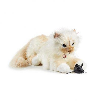 Con 500$ puoi comprare il gatto di Karl Lagerfeld impagliato