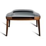 porsche-desk-cover